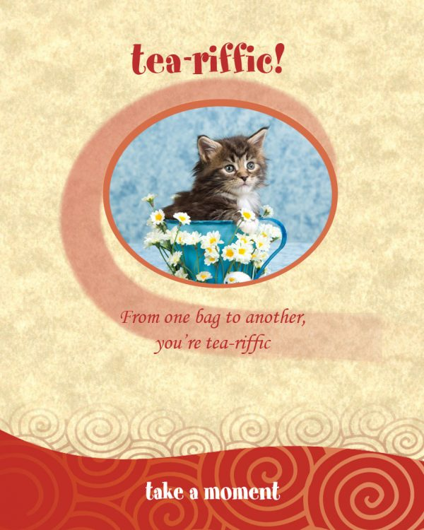 Chatabox Friendship Teabags bloomsoncameron tea-riffic