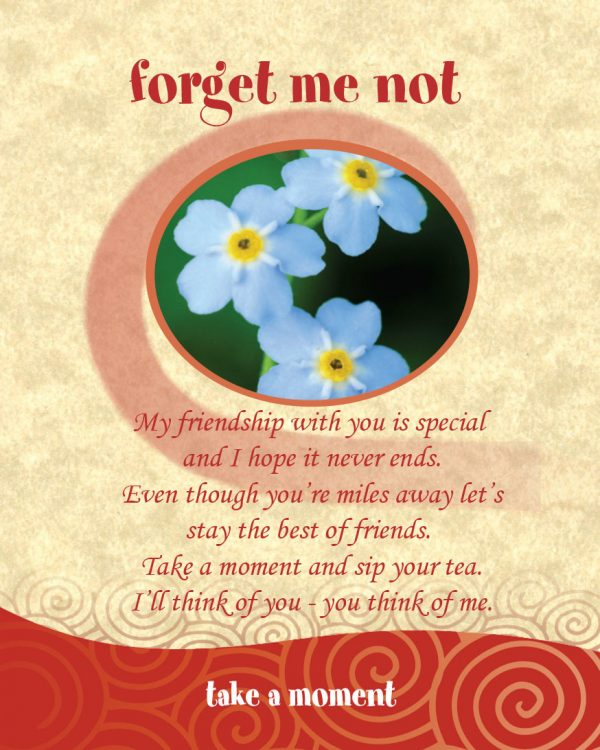 Chatabox Friendship Teabags bloomsoncameron forget me not